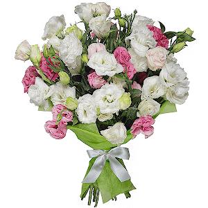 Магазин цветов в москве оазис чита, заказ эксклюзивных букетов на дом минск
